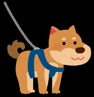 pet_dog_harness