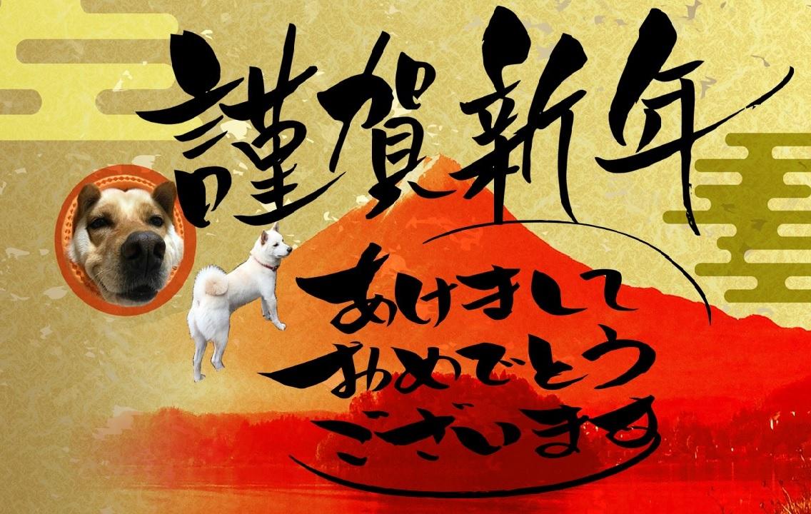 犬 謹賀新年画像